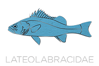 Lateolabracidae